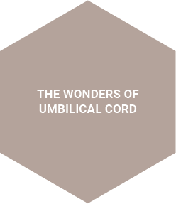 The Wonders of Umbilical Cord